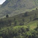 escursioni112